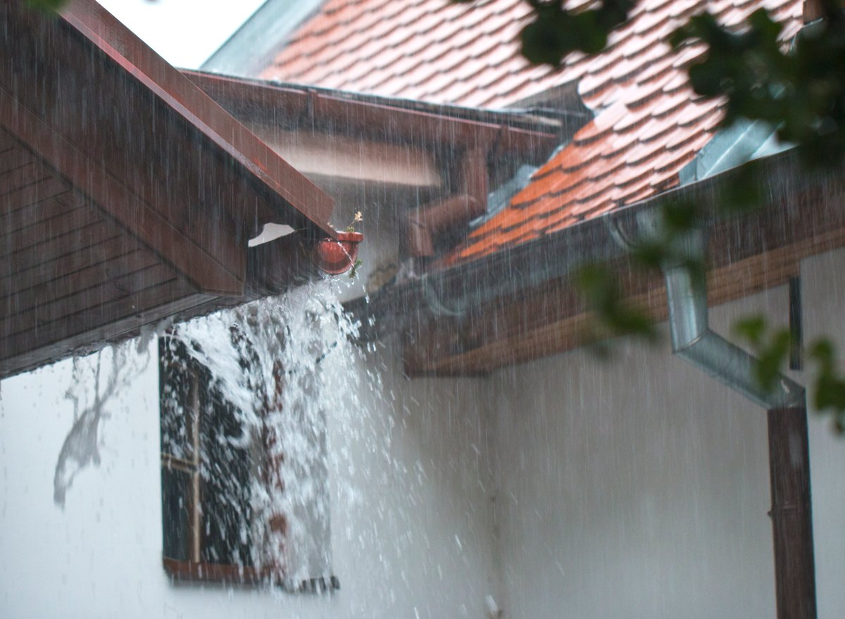 Eugene Clogged Gutters